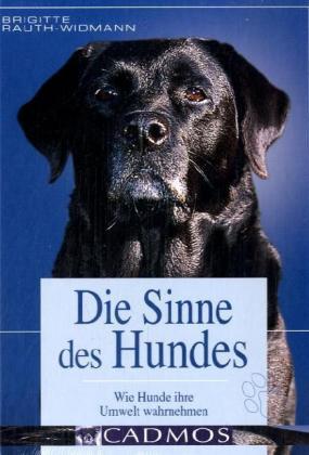 Die Sinne des Hundes – Brigitte Rauth-Widmann